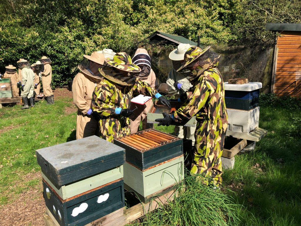 Next Apiary Meeting 27th April